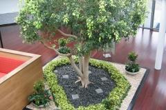 corporate-gardens_0025