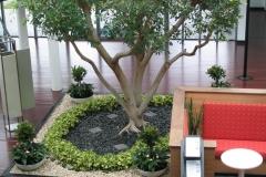 corporate-gardens_0028
