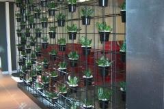 Green-wall-026