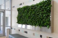 green-wall4